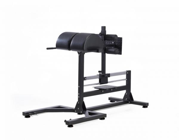 Panca allenamento crossfit WBX300